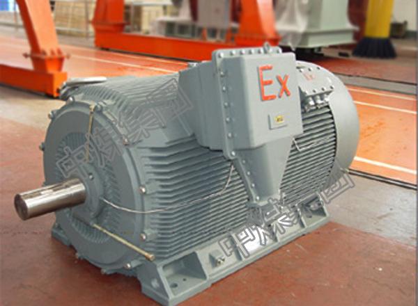 YB系列防爆型三相异步电机