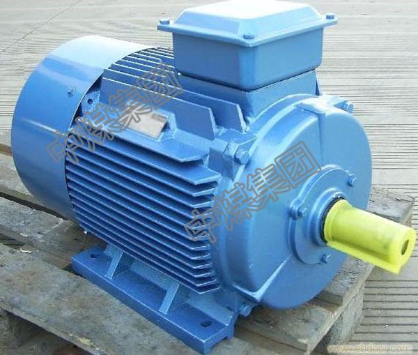 YB2D系列变级多速三相异步电机